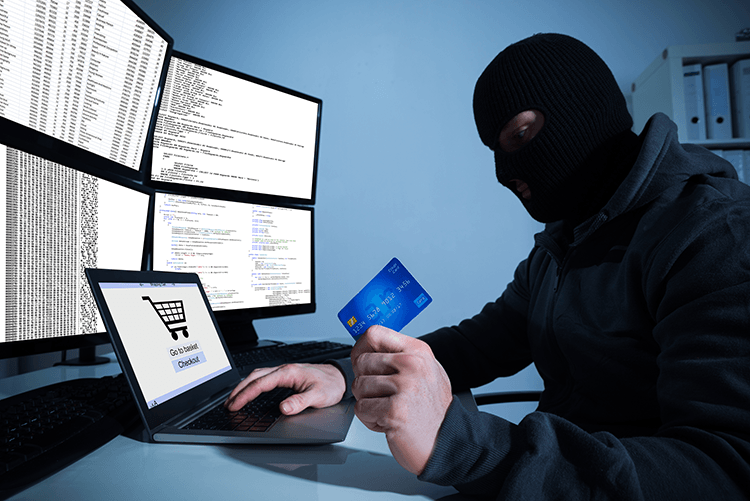 criminal hacker credit card computer security
